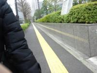 裁判所前の通り